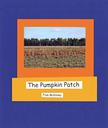 Cover: The Pumpkin Patch